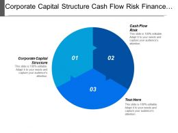 Corporate Capital Structure Cash Flow Risk Finance Asset Management Cpb