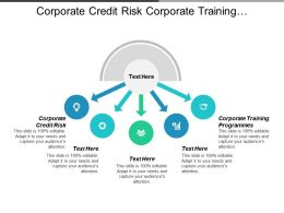 Corporate Credit Risk Corporate Training Programmes Credit Risk Models Cpb