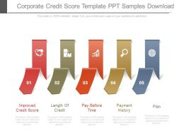 Corporate Credit Score Template Ppt Samples Download