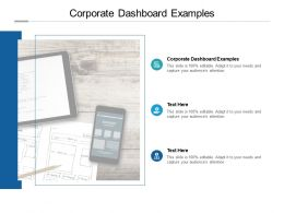 Corporate Dashboard Examples Ppt Powerpoint Presentation Pictures Layout Cpb