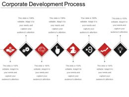 Corporate Development Process Ppt Infographics