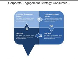 Corporate Engagement Strategy Consumer Behavior Report Capability Development Cpb