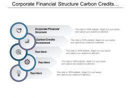 Corporate Financial Structure Carbon Credits Investment Operations Technology Management Cpb