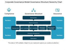 Corporate Governance Model Governance Structure Hierarchy Chart Ppt Example