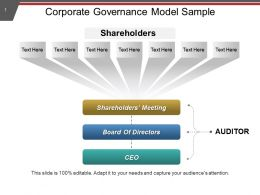 Corporate Governance Model Sample PPT Example File