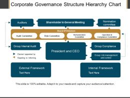 Corporate Governance Structure Hierarchy Chart Ppt Examples