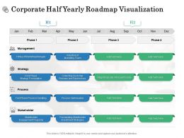 Corporate Half Yearly Roadmap Visualization