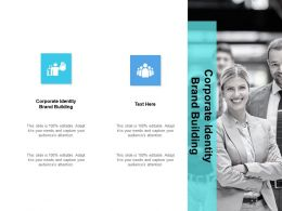 Corporate Identity Brand Building Ppt Powerpoint Presentation Maker Cpb