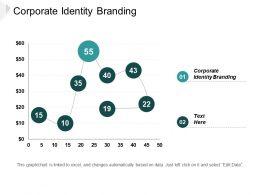 Corporate Identity Branding Ppt Powerpoint Presentation Portfolio Template Cpb