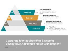 Corporate Identity Branding Strategies Competitive Advantage Matrix Management Cpb