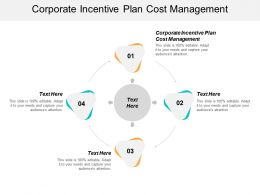 Corporate Incentive Plan Cost Management Ppt Powerpoint Presentation Ideas Graphics Download Cpb
