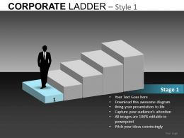 Corporate Ladder Style 1 Powerpoint Presentation Slides db