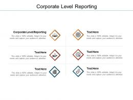 Corporate Level Reporting Ppt Powerpoint Presentation Inspiration Backgrounds Cpb