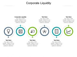 Corporate Liquidity Ppt Powerpoint Presentation Show Graphics Design Cpb