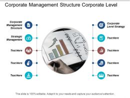 Corporate Management Structure Corporate Level Strategy Strategic Management Cpb