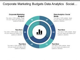 Corporate Marketing Budgets Data Analytics Social Media Cpb