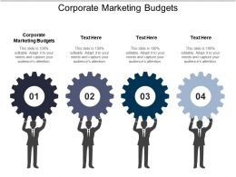 Corporate Marketing Budgets Ppt Powerpoint Presentation Ideas Icon Cpb