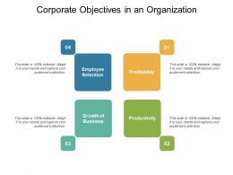 Corporate Objectives In An Organization