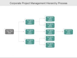 Corporate Project Management Hierarchy Process