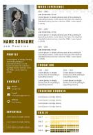 Corporate Resume Powerpoint Design With Professional Infographic Design