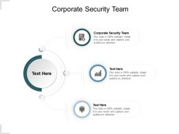 Corporate Security Team Ppt Powerpoint Presentation Pictures Layout Ideas Cpb