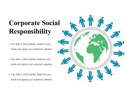 Corporate Social Responsibility Ppt Summary Format Ideas