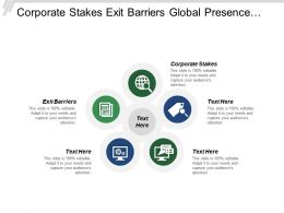 Corporate Stakes Exit Barriers Global Presence Vision Strategy