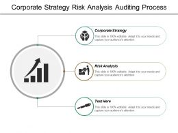 Corporate Strategy Risk Analysis Auditing Process Critical Risk Management Cpb
