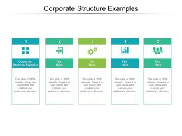 Corporate Structure Examples Ppt Powerpoint Presentation Infographic Template Outfit Cpb