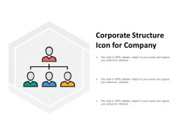Corporate Structure Icon For Company
