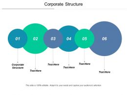 Corporate Structure Ppt Powerpoint Presentation File Inspiration Cpb