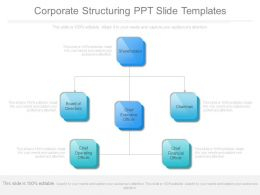 Corporate Structuring Ppt Slide Templates