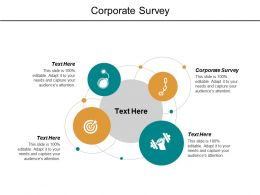 Corporate Survey Ppt Powerpoint Presentation File Background Designs Cpb