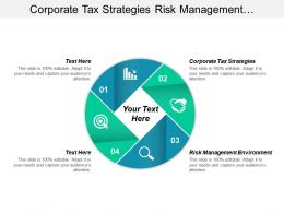 Corporate Tax Strategies Risk Management Environment Global Strategic Cpb