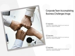 Corporate Team Accomplishing Business Challenges Image