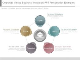 Corporate Values Business Illustration Ppt Presentation Examples