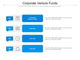Corporate Venture Funds Ppt Powerpoint Presentation Pictures Structure Cpb