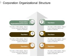 Corporation Organizational Structure Ppt Powerpoint Presentation Infographic Template Portfolio Cpb