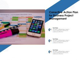 Corrective Action Plan For Business Project Management
