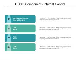 COSO Components Internal Control Ppt Powerpoint Presentation Outline Layout Cpb