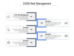 COSO Risk Management Ppt Powerpoint Presentation Infographic Template Icon
