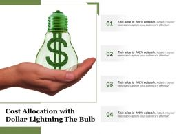 Cost Allocation With Dollar Lightning The Bulb