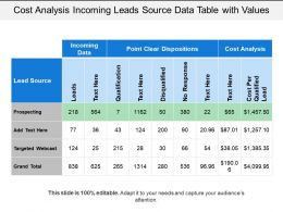 Cost Analysis Incoming Leads Source Data Table With Values