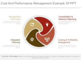 Cost And Performance Management Example Of Ppt