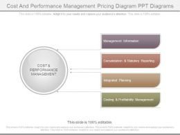 Cost And Performance Management Pricing Diagram Ppt Diagrams