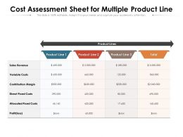 Cost Assessment Sheet For Multiple Product Line