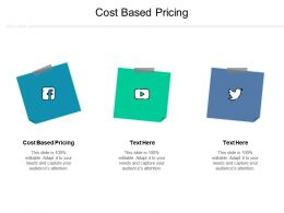 Cost Based Pricing Ppt Powerpoint Presentation Icon Vector Cpb