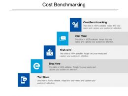 Cost Benchmarking Ppt Powerpoint Presentation Gallery Layouts Cpb