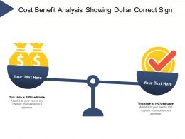 Cost Benefit Analysis Showing Dollar Correct Sign