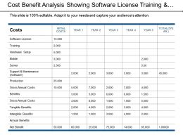 Cost Benefit Analysis Showing Software License Training And Hardware Setup